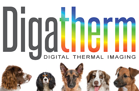 digatherm laser therapy slide