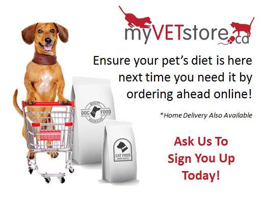my vet store promotional matierial